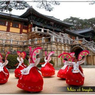 dieu-mua-co-truyen-han-quoc, tour du lich nhat ban gia re