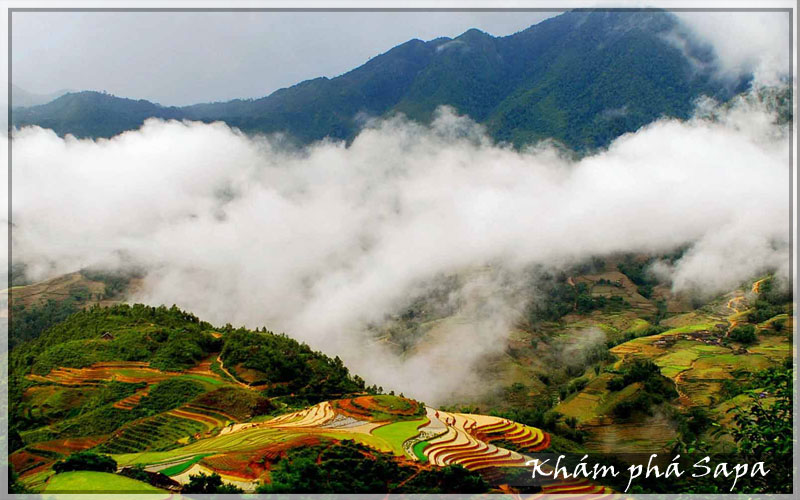 du-lich-ha-long-tuan-chau-sapa