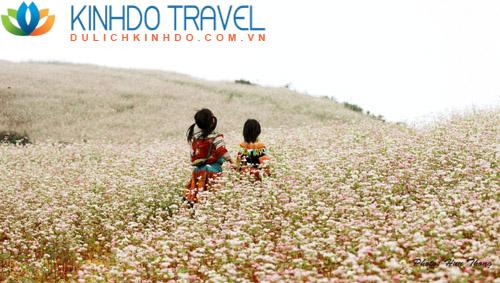 Du lịch miền Bắc: Tour Hà Giang – Đồng Văn – Lũng Cú 3 ngày