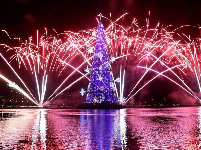 Những cây thông Noel độc và lạ nhất thế giới