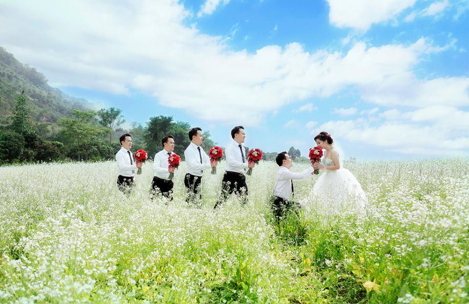 Trải nghiệm mùa cải trắng tinh khôi ở cao nguyên Mộc Châu
